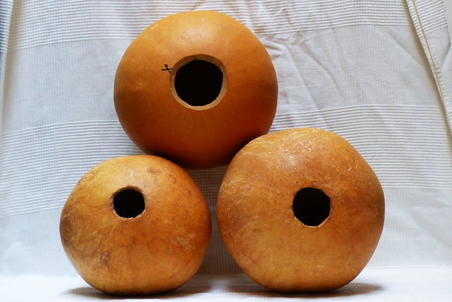 Ø19-20 cm whole calabash - Spherical gourd